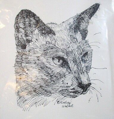 NIP Siamese Cat Note Cards Illustrations By Richard Wallich 6 Cards & Envelopes