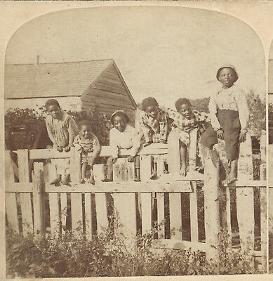 6 Black African American Youths On A Fence 1891 Stereoview