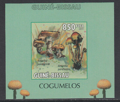 Guinea Bissau 5659 - 2010 MUSHROOMS #3 imperf deluxe sheet unmounted mint