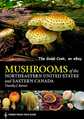 Mushrooms of the Northeastern United States and Eastern Canada  Field Guide  New