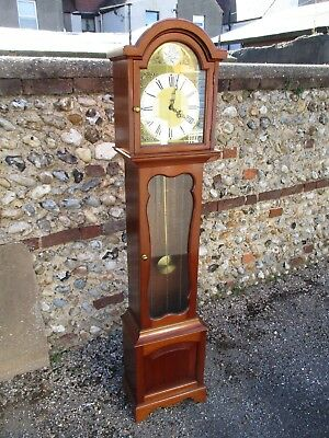 Vintage Tempus Fugit Longcase Grandfather Clock - Westminster Chime