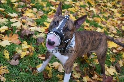 Strong Leather Dog Muzzle - Safe Walking for Muzzle German Shepherd and Other