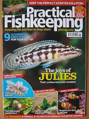 Practical Fishkeeping June 2015 Killifish Julies Jellyfish River Aquarium