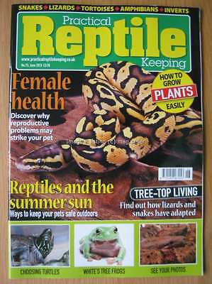 Practical Reptile June 2015 Turtles White's Tree Frogs Lizards Snakes Tortoises