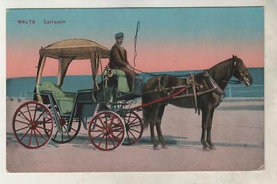 MALTA - CARROZZIN Horse & Carriage Postcard *