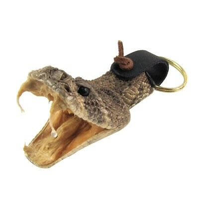 Eastern Diamondback Rattlesnake Head Keychain Real Taxidermy Car Key Chain Ring