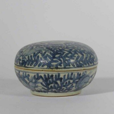 Chinese Ming Blue and White Paste Box Horse and Rabbits, Floral Decore # 473