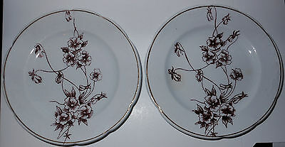Vintage 2 English Brown Transferware Children'sToy Plates, Gold Rims, Ironstone