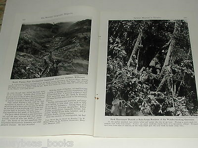 1946 magazine article on Ecuador, WWII Quinine production