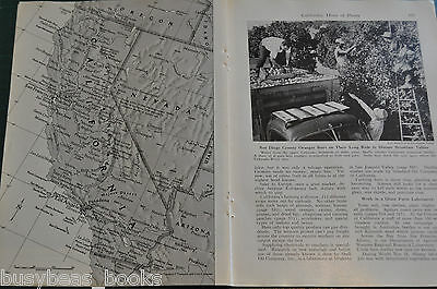 1949 magazine article CALIFORNIA, people, industry etc, color photos
