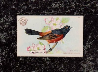 1922 Arm & Hammer Soda Orchard Oriole Useful Birds 3rd Series #13 by M E Eaton