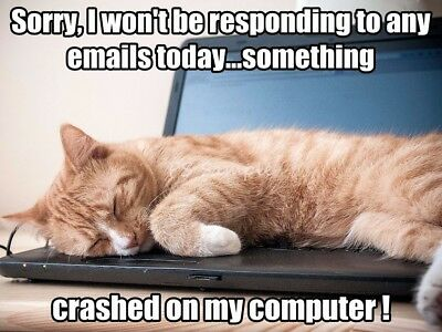 CAT Won't Be Responding to Emails Today Funny Magnet 4 x 3 inches