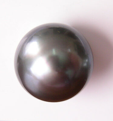1mm!! TAHITIAN BLACK PEARL UNDRILLED 100% UNTREATED +CERTIFICATE AVAILABLE