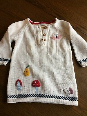 Baby Girls Jumper Dress From Next 3-6months
