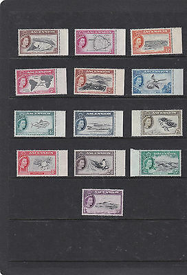 Ascension Island 1956 Pictorial Set {Birds,turtle} Sg.57-69 Unmounted Mint--Mnh