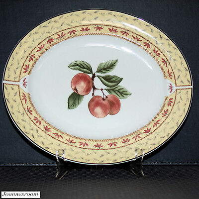 * Johnson Bros FRUIT SAMPLER Serving Platter ( Newer )