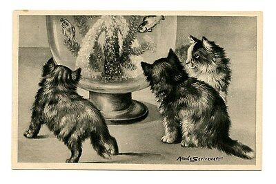 vintage cat postcard Scrivener curious cats watch fish in bowl