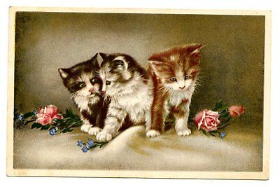 vintage cat postcard adorable trio cats kittens & pink roses