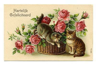 vintage cat postcard lovely cats play in basket pretty roses