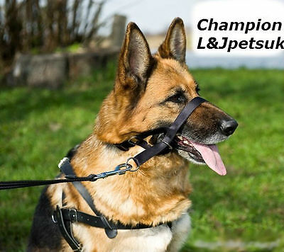 Padded Head Collar Champion Dog Training Halter Stops Dog Pulling Training Tool