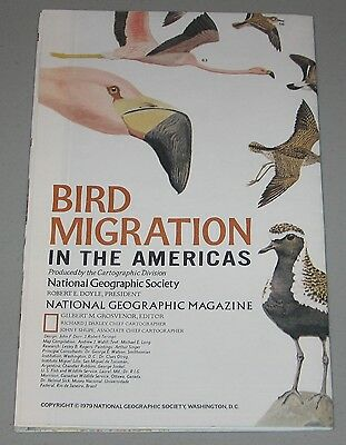 National Geographic Map - Bird Migration in the Americas 1979