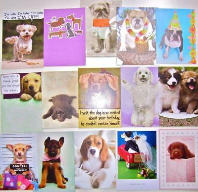 Lot Of 15 Variety DOG LOVERS Greeting Cards RPG Marian Heath Portal 45 RETAIL