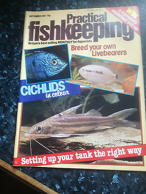 PRACTICAL FISHKEEPING -September1981Breed your own Livebears