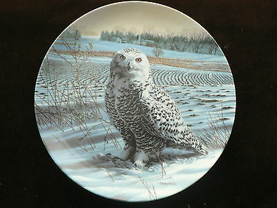 Knowles Collector Plate: The Snowy Owl, Bird, Stately Owls Series