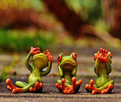 FUNNY TREE FROGS SEE SPEAK HEAR  NO EVIL COMPUTER MOUSE PAD 9 x 7