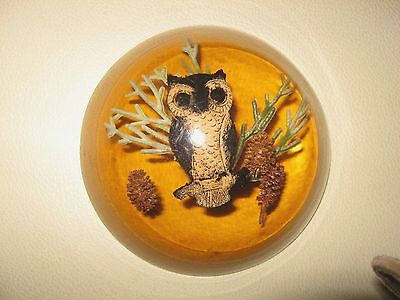 Vintage Lucite dome shape paperweight OWL image + magnifying base