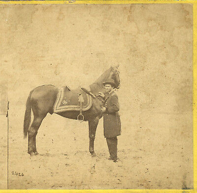 Lieut. Gen. Grant & Horse Lexington Cold Harbor Civil War Stereoview Brady Neg