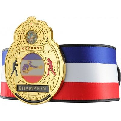 Title Boxing Plastic Centerplate Satin Traditional Title Belt