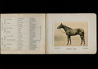 Newmarket Horse Racing Stud Card Salmon Leap 1933