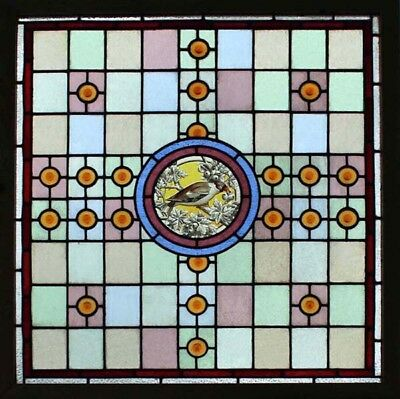 Rare Stunning English Victorian Painted Bird In Blossom Stained Glass Window