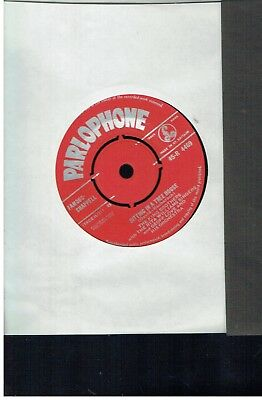 King Brothers Sitting Inn A Tree House 45 1958