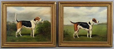 Pair Antique American Oil Paintings, FOXHOUND Hunting Sporting Dog Portraits NR