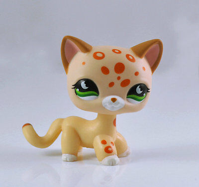 Pet Short Hair Cat Collection Child Girl Boy Littlest Figure Toy Loose LPS820