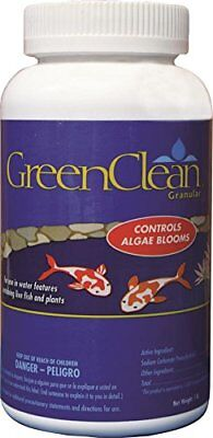 GreenClean Granular Algaecide - 1 lb - String Algae Control for Koi Pond,