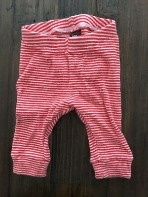 TEA COLLECTION NORDSTROM Baby Boys or Girls Striped STRETCH Leggings - 3-6 M