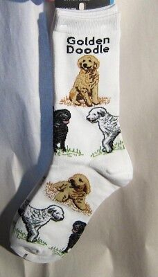 4Bare Adult Size GOLDEN DOODLE Poses Adult Socks size Medium 6-11