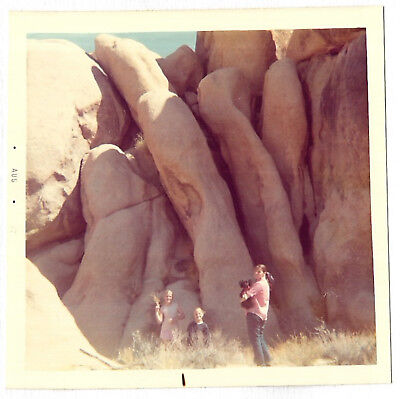 Square Vintage 70s PHOTO Girls w/ Little Dog At Rocky Nature Outing w/ Big Rocks