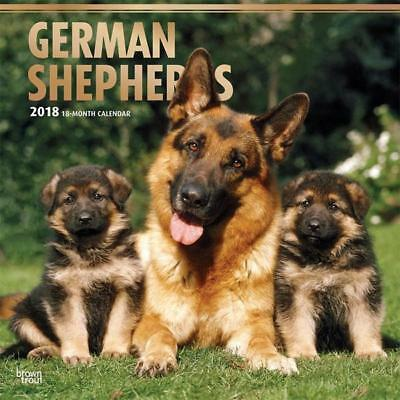 2018 German Shepherds Dogs Calendar, Wall Calender