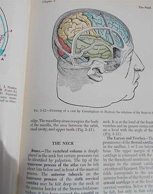Vintage Gray's Anatomy 28th Ed Medical Book Halloween Prop Great Illustrations