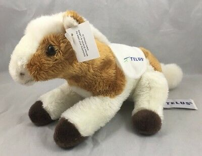 Telus Spruce Meadows Show Jump Horse Pony Calgary Brown White Anna Club Plush