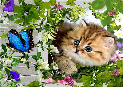 Cat&Butterfly DIY 5D Diamond Embroidery Painting Cross Stitch Home Decor Craft