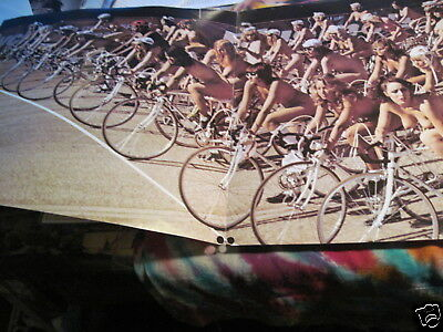 """Queen - Bicycle Poster - 12"""" X 36"""" ------------  K @ @ L"""