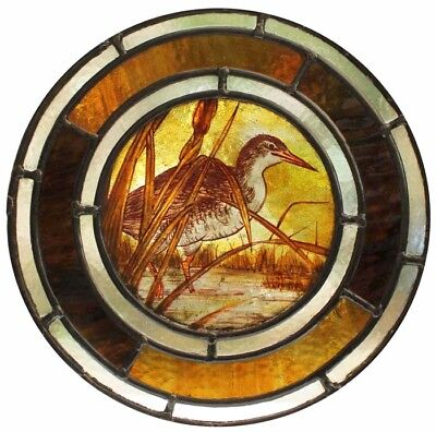 Rare Victorian Painted Bird English Lakeland Bittern Stained Glass Roundel
