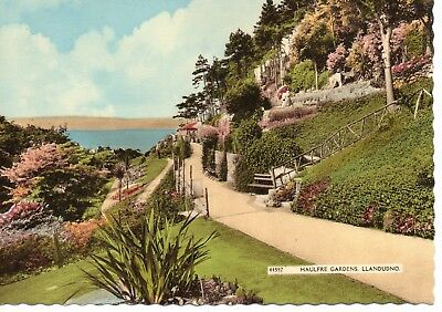 Llandudno * Haulfre Gardens *lovely Vintage View*(4)