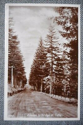 Avenue To Bridge Of Cally, Real Photograph Postcard 1933. Kirkmichael,Perthshire
