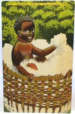 1940 Postcard Two Staple Products Down In Sunny Dixie,black Child In Cotton